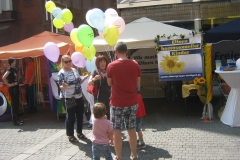 2014-AIDS-Hocketse   27.7.2014